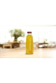 Vapiano Ice Tea - Green Lemon Prickly Pear 0,5 l