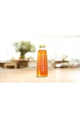 Vapiano Ice Tea - Unsweetened - Black tea & Lemon 0,5 l
